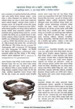 সম্ভাবনাময় কাঁকড়া চাষ ও রপ্তানি: আমাদের করণীয়