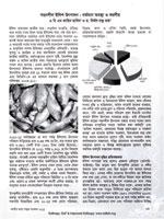 সহনশীল ইলিশ উৎপাদন: বর্তমান অবস্থা ও করণীয়