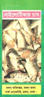 নাইলোটিকার চাষ
