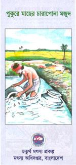 পুকুরে মাছের চারাপোনা মজুদ