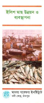 ইলিশ মাছ উন্নয়ন ও ব্যবস্থাপনা